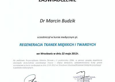 certyfikat0036