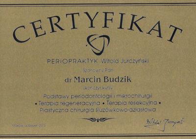 certyfikat20002